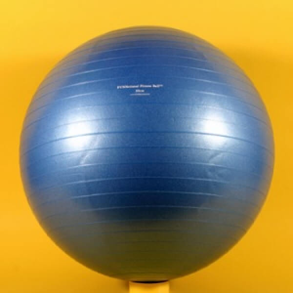 Burst Resistant FUNNctional Fitness Ball 55