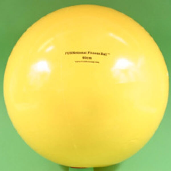 FUNNctional Fitness Ball 60